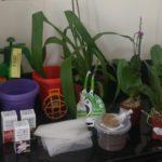Rifa Rosa do Canal | Kit orquidófilo Completo